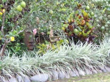 Vista Valverde Gardens